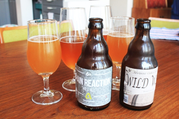 Sour Beer Styles