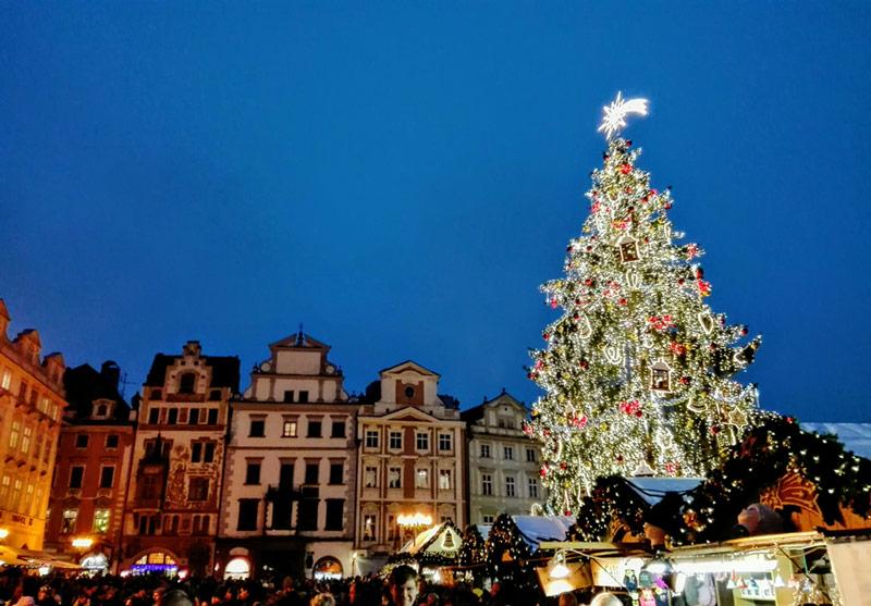 Beer and Christmas Cheer