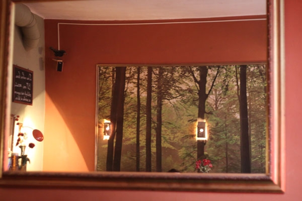 Cafe V Lese